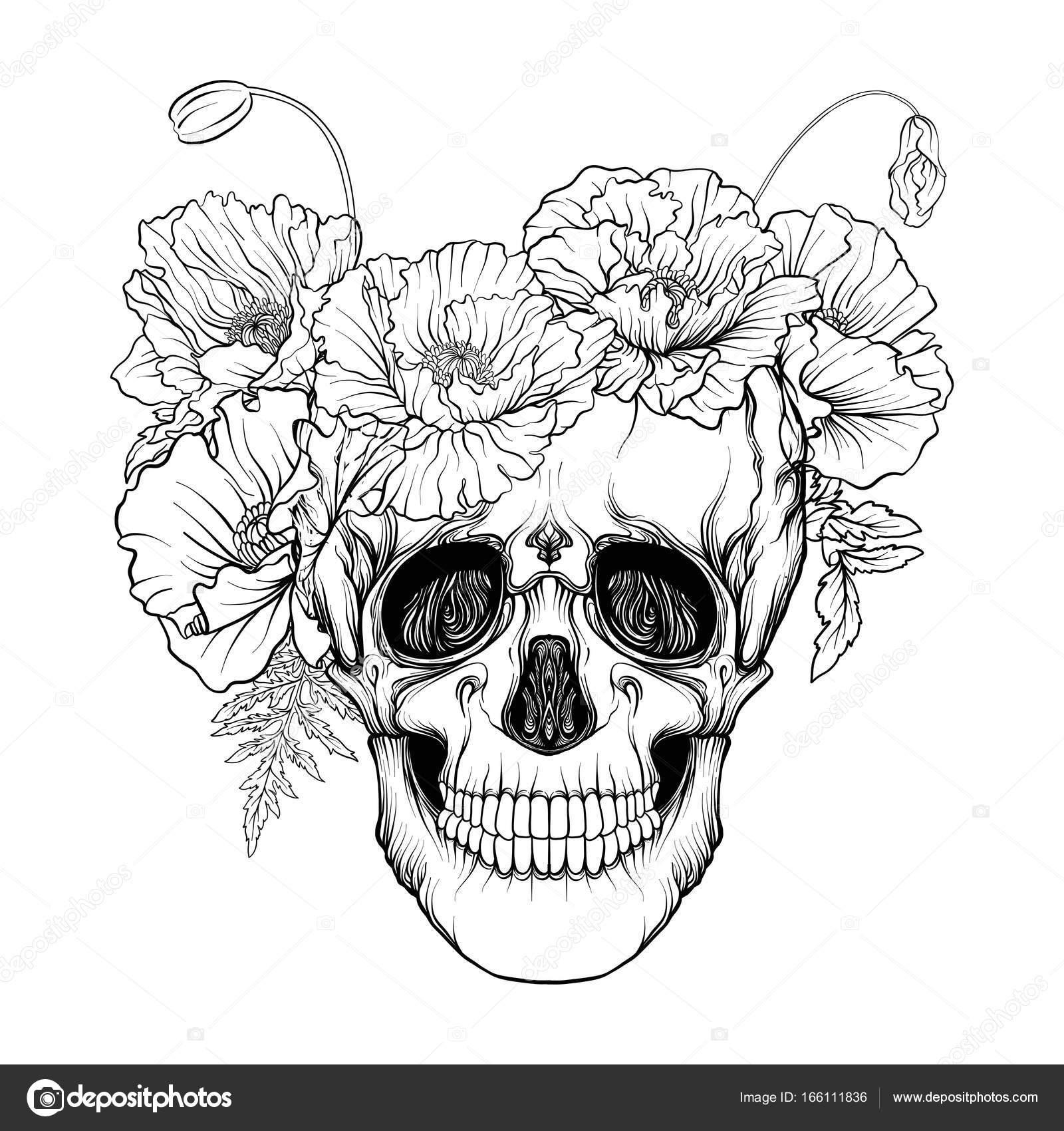 Dibujos Dibujo De Un Craneo Para Colorear Cráneo Del Azúcar Con