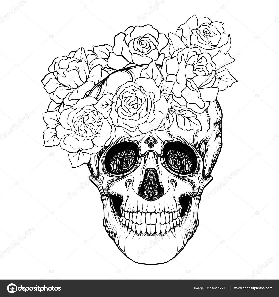 Dibujos Calaveras Con Rosas Calavera De Azúcar Con Patrón