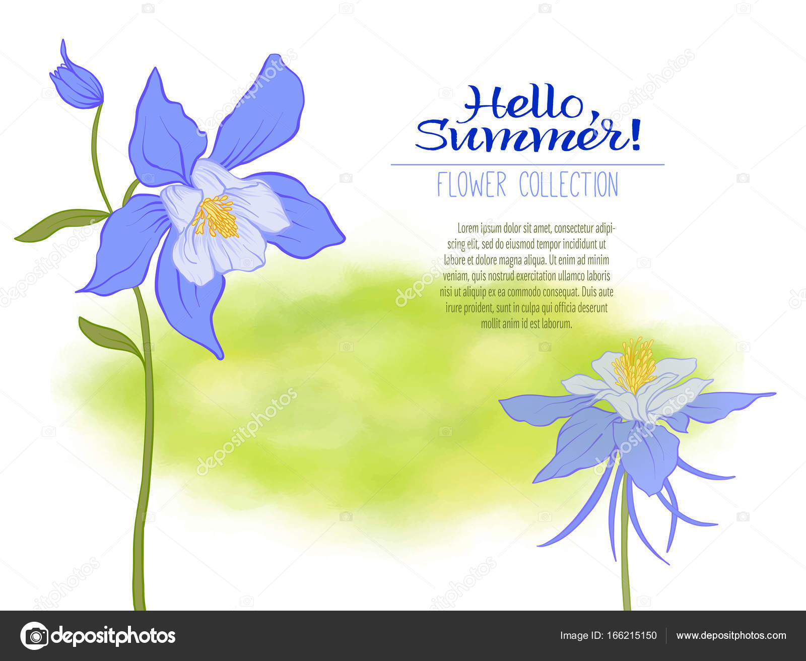 A columbine flower on a green watercolor background the flowers a columbine flower on a green watercolor background the flowers in the botanical style minimalistic design place for the inscription izmirmasajfo