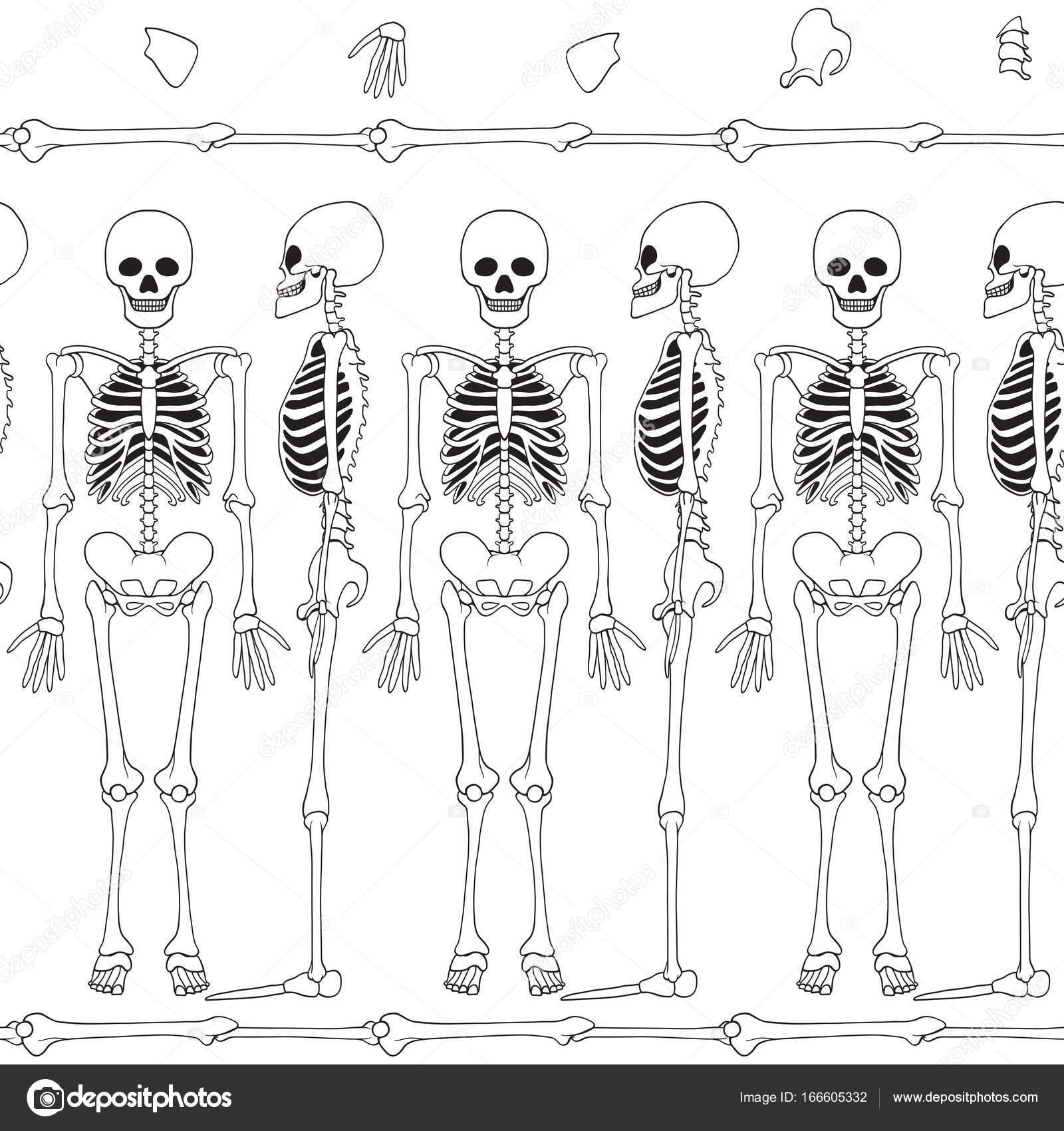 Patrón de fondo con el baile de los esqueletos, — Archivo Imágenes ...
