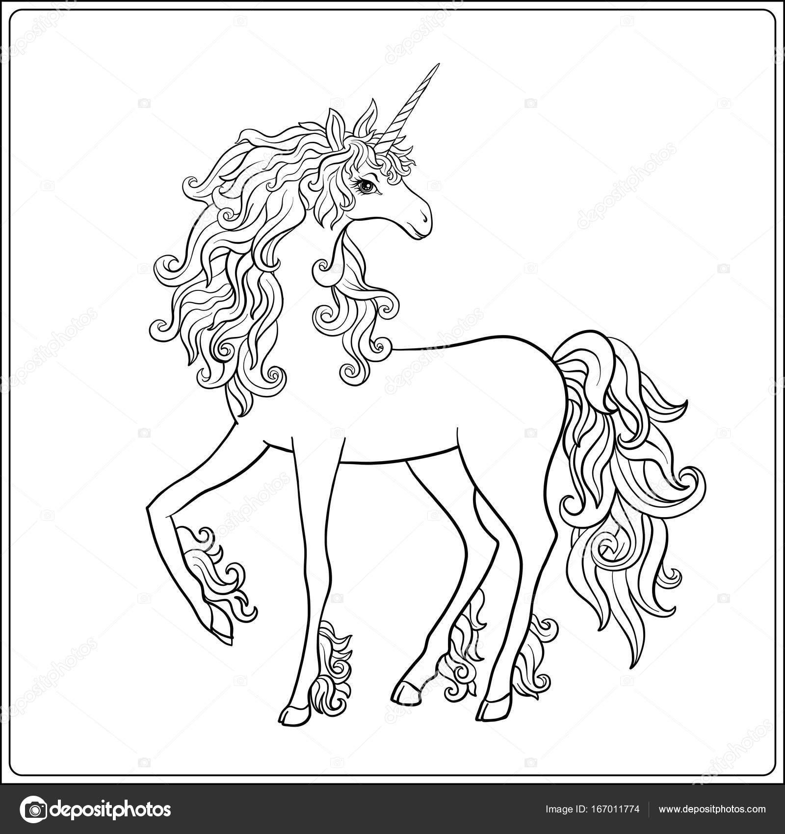 Tek Boynuzlu At Anahat çizim Boyama Sayfası Yetişkin Için