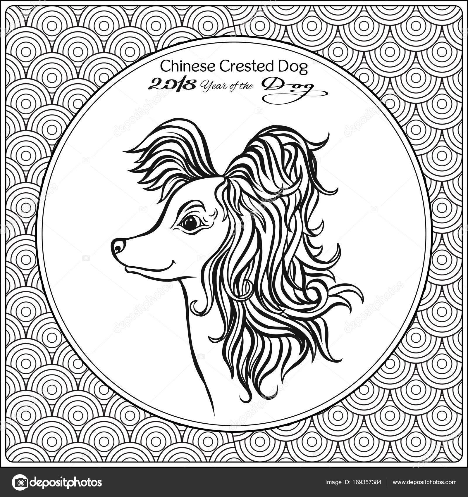 çince Boyama Sayfası Ile Geleneksel Zemin üzerine Köpek Desenli