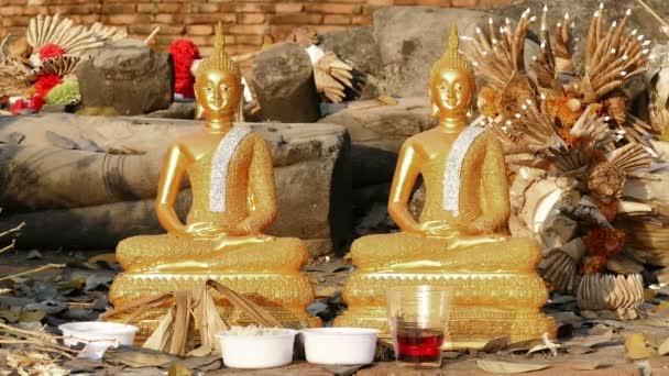 Buddha sochy Temple Leaf podzim 4k