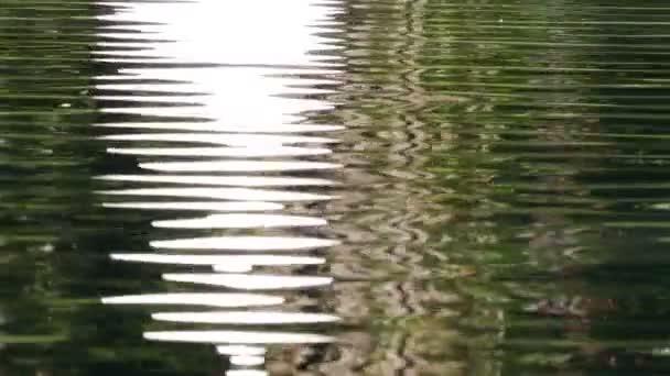 Vodní reflexe pozadí slunce 4k