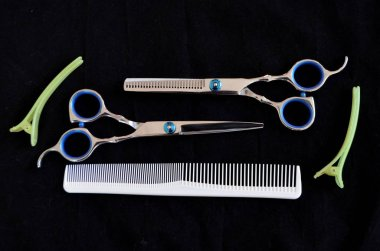 Shears and brushes for hair on a black background