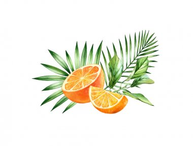 Watercolor orange fruits. Tropical bouquet with juicy fruits and palm leaves. Botanical hand drawn illustration for food label design