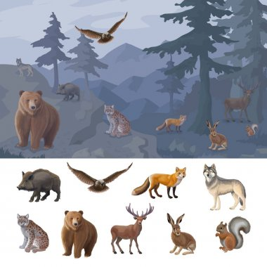 Cartoon colorful forest animals set with wild boar owl fox wolf lynx bear deer hare squirrel vector illustration stock vector