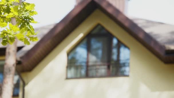 Zöld levelek a fiatalok ágán. Háttér - ház barna ablakkal napos nap
