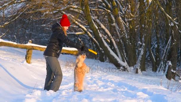 Žena cvičit svého psa venku žluté holí
