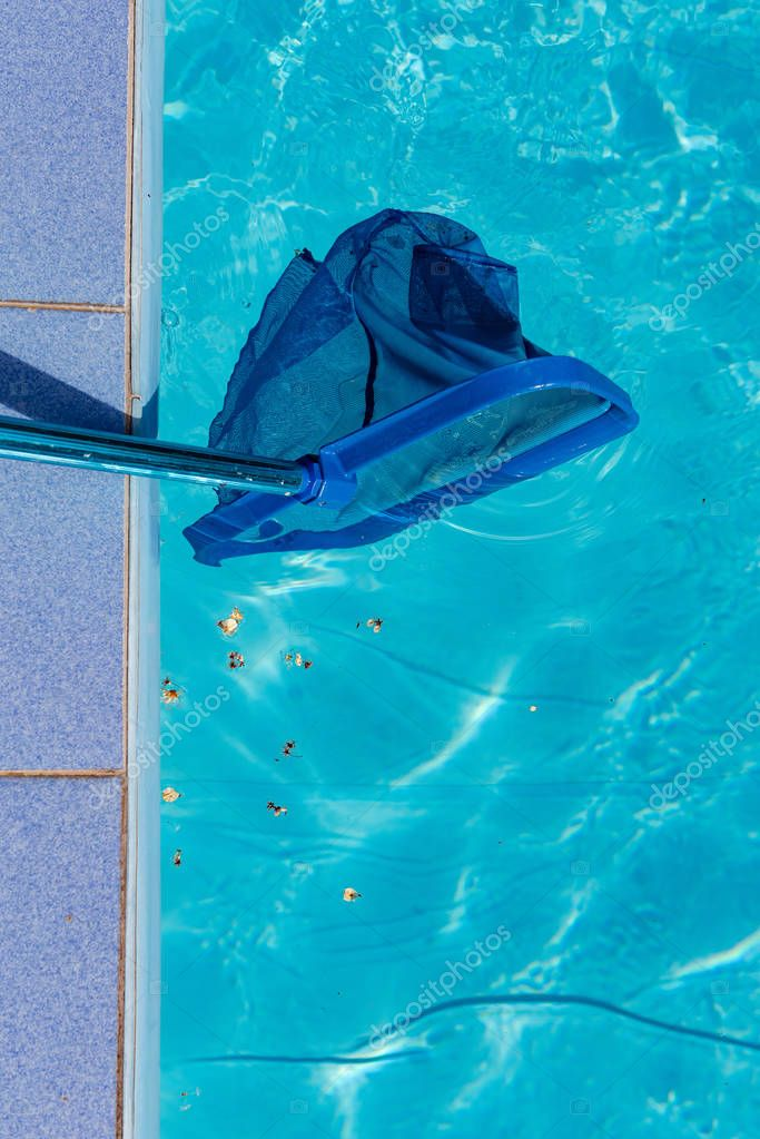Trash in pool and net cleaner close up