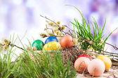 Színes húsvéti tojást egy kosárban