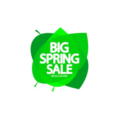 Big Spring Sale, bubble banner design template, discount tag, app icon, vector illustration
