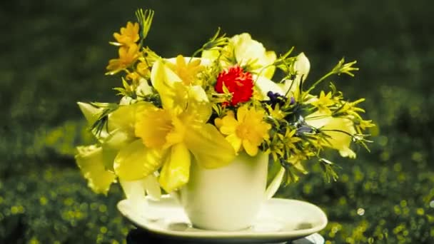 bouquet of yellow daffodils rotates on nature in a small coffee cup instead of a vase. concept of holiday greeting card, time to drink coffee.