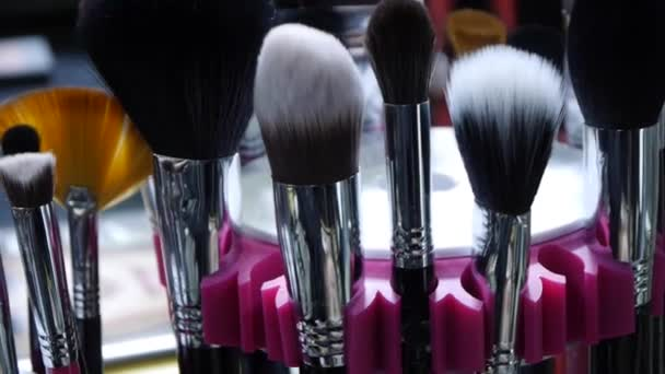 A set of professional brushes for makeup and cosmetic purposes.