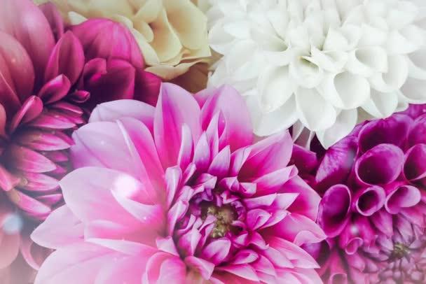 Bokeh romantikus virágok szerelem valentin háttér