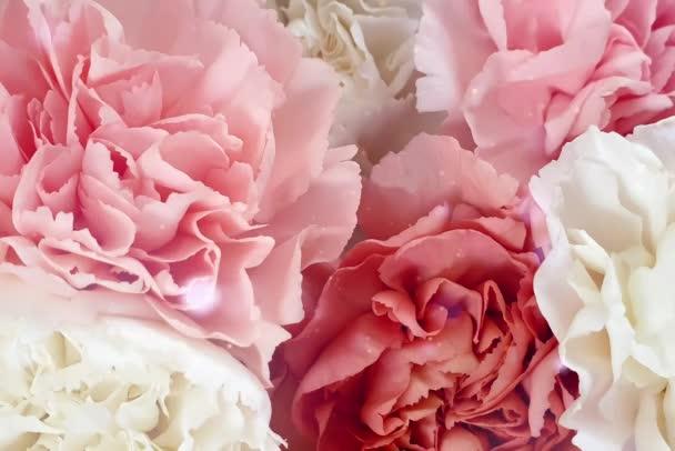 Bokeh romantické květiny láska valentine pozadí