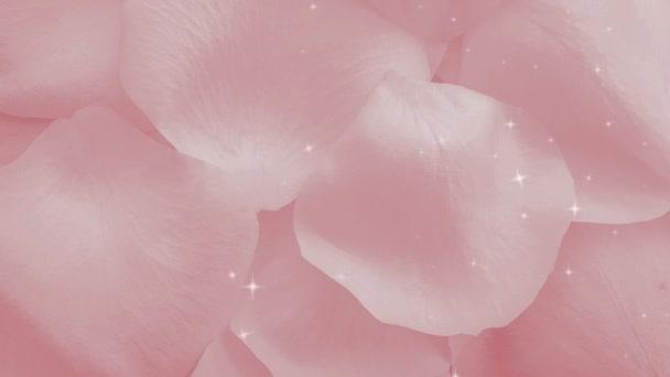 Růžové okvětní lístky růží lesklé pozadí