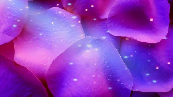 Blue rose petals shiny background