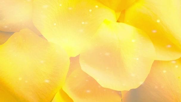 Virágos rózsaszirmok tiszta háttér