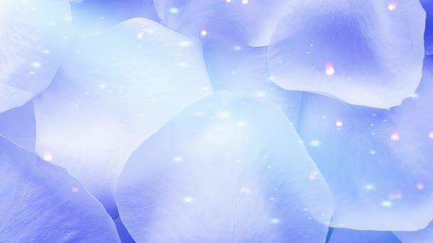 Modrá růže okvětní lístky lesklé pozadí