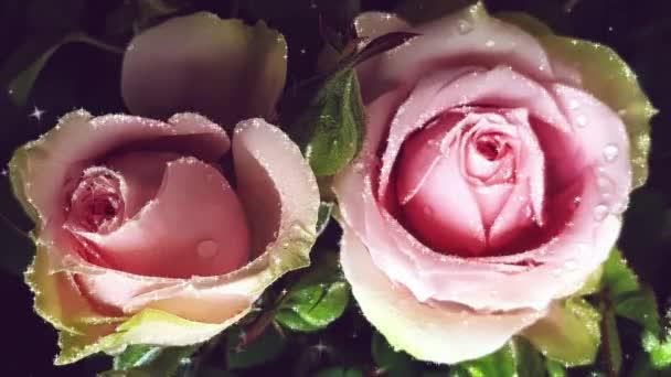 Rózsaszín csillogó rózsák gyönyörű virágok