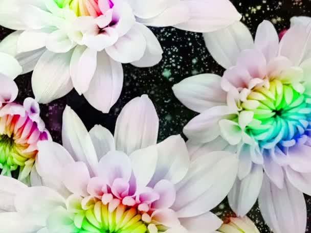 barevné mnohobarevné květinové květinové detailní