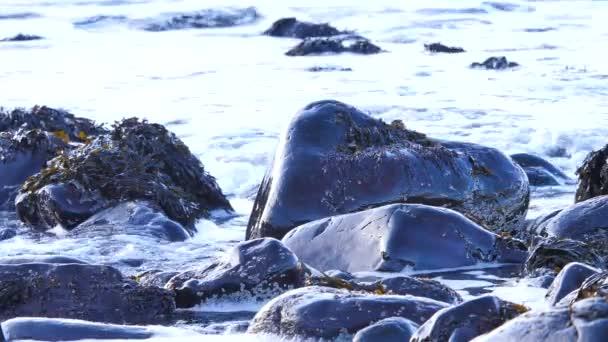 Velké silné vlny, které narazilo do ostré skalní Aberdeen ve Skotsku. Pěnité mořem. Zaoblené velké černé kameny a ostré skalní věž pěnitou n. Hebridy. Turistické středisko