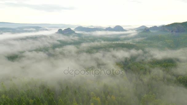 Tavaszi Ködös reggel erdős táj. Nézd körül. Fenséges csúcsok vágni világítás köd. Mély völgy tele a színes köd és sziklás dombok is ragadt a Sun