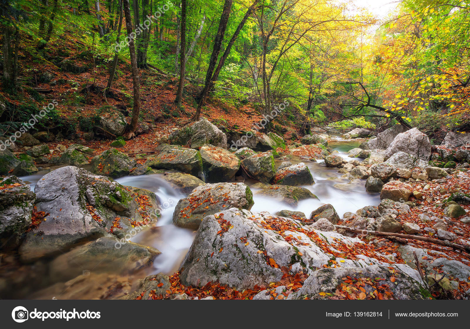 Hermoso Paisaje De Otoño Con Río De Montaña Y Colorido