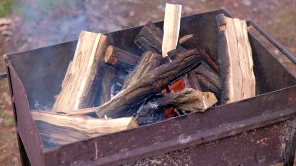 Oheň hoří stromy. Barbecue gril Flame oheň