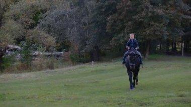 Little boy riding a big horse