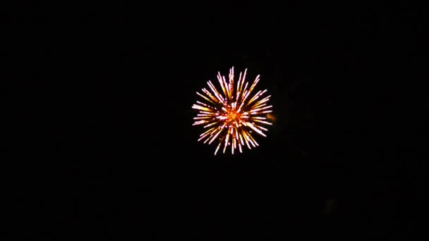 Ohňostroj oslava barevné jiskry