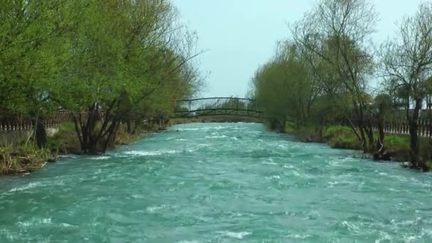 Brücke am Fluss und grüne Natur