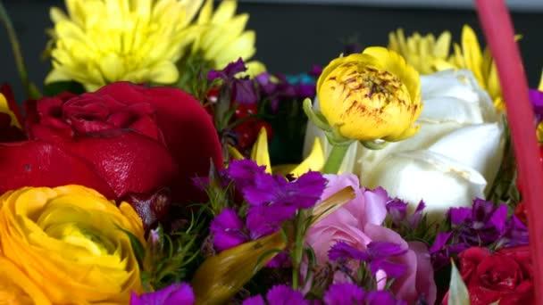 Colorful Romantic Flora Flowers