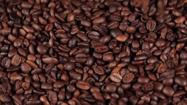 Sült bab friss kávé, mozgás