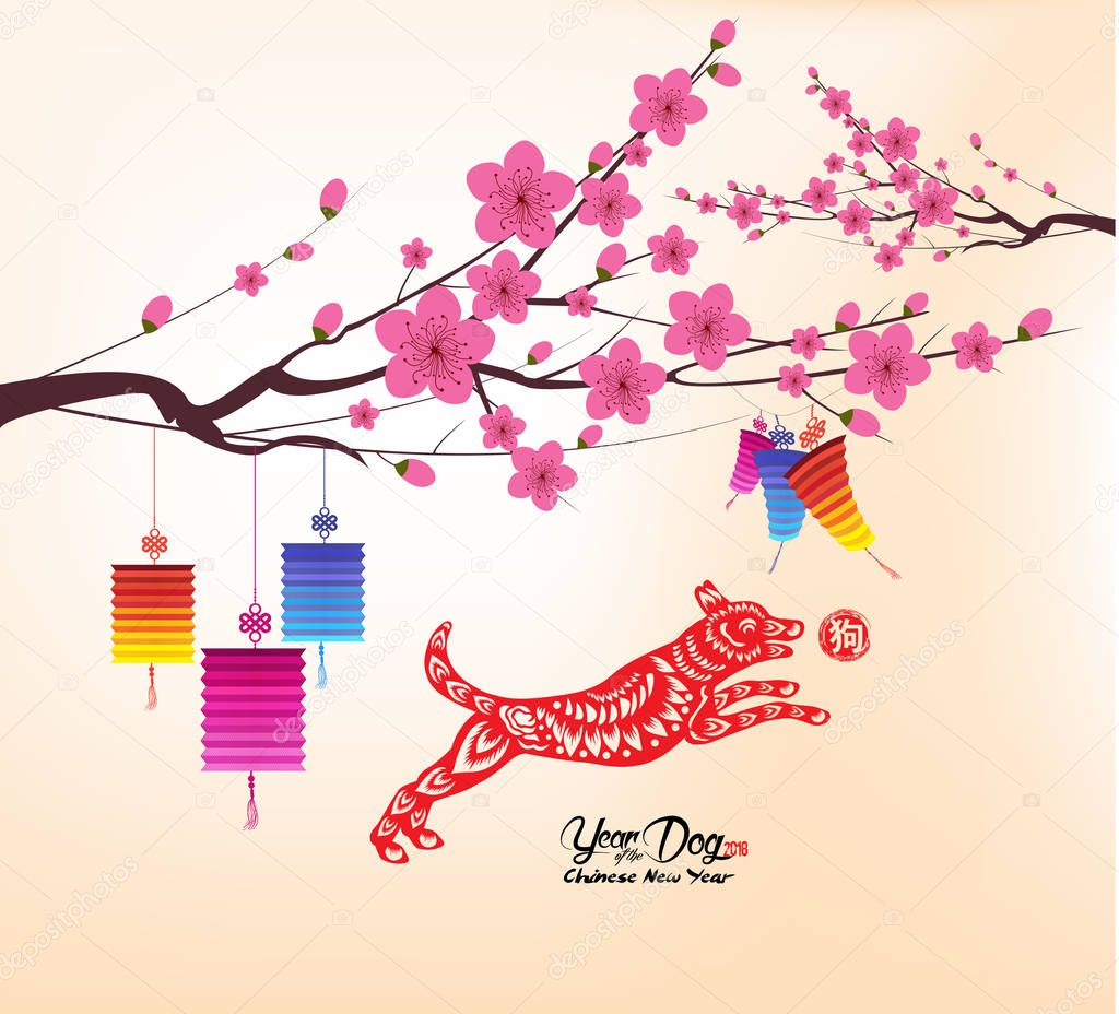 Chinese new year 2018, background with lantern and plum blossom (hieroglyph: Dog)