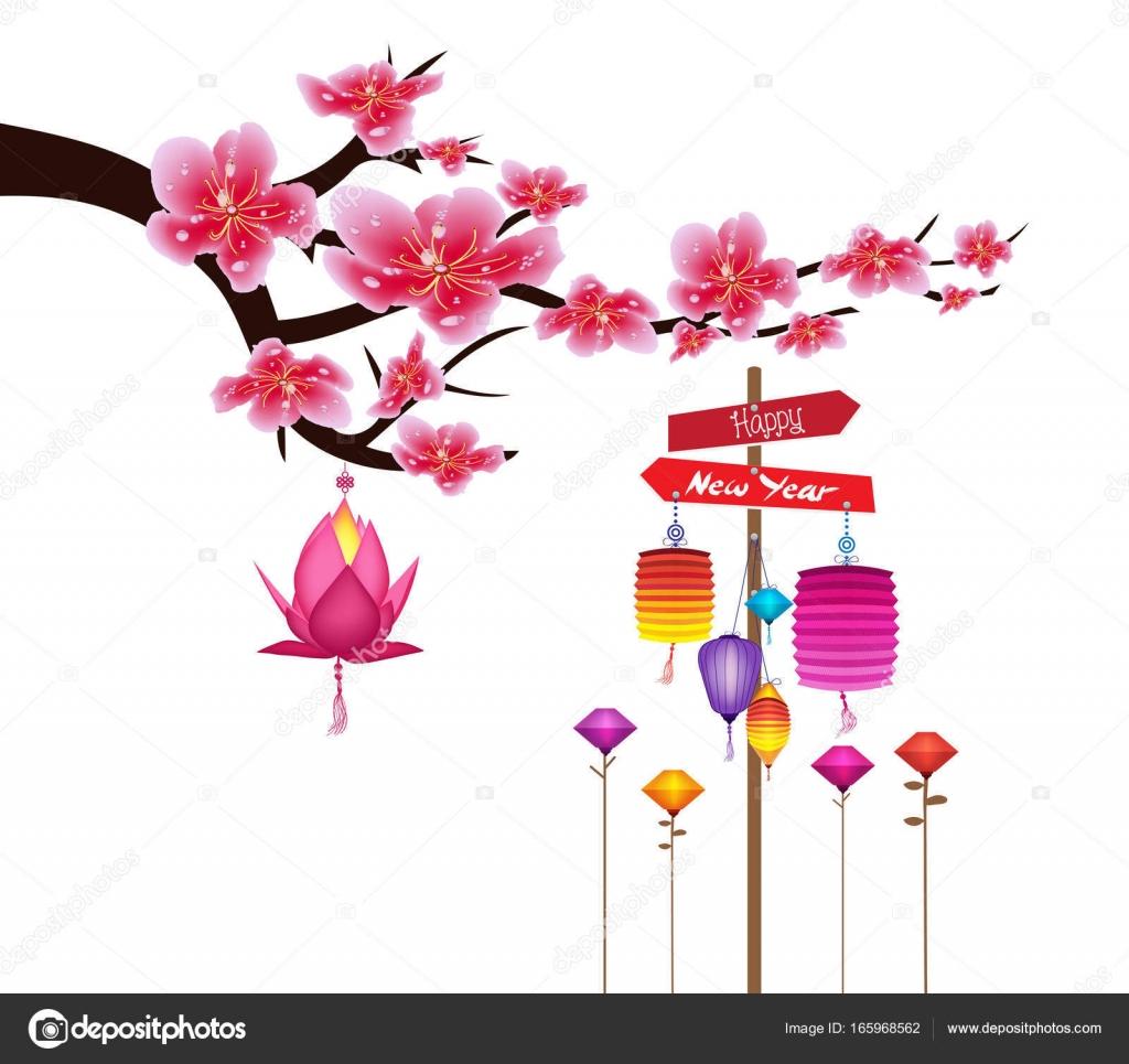 Sakura Flowers Background Cherry Blossom And Lantern Isolated White Chinese New Year