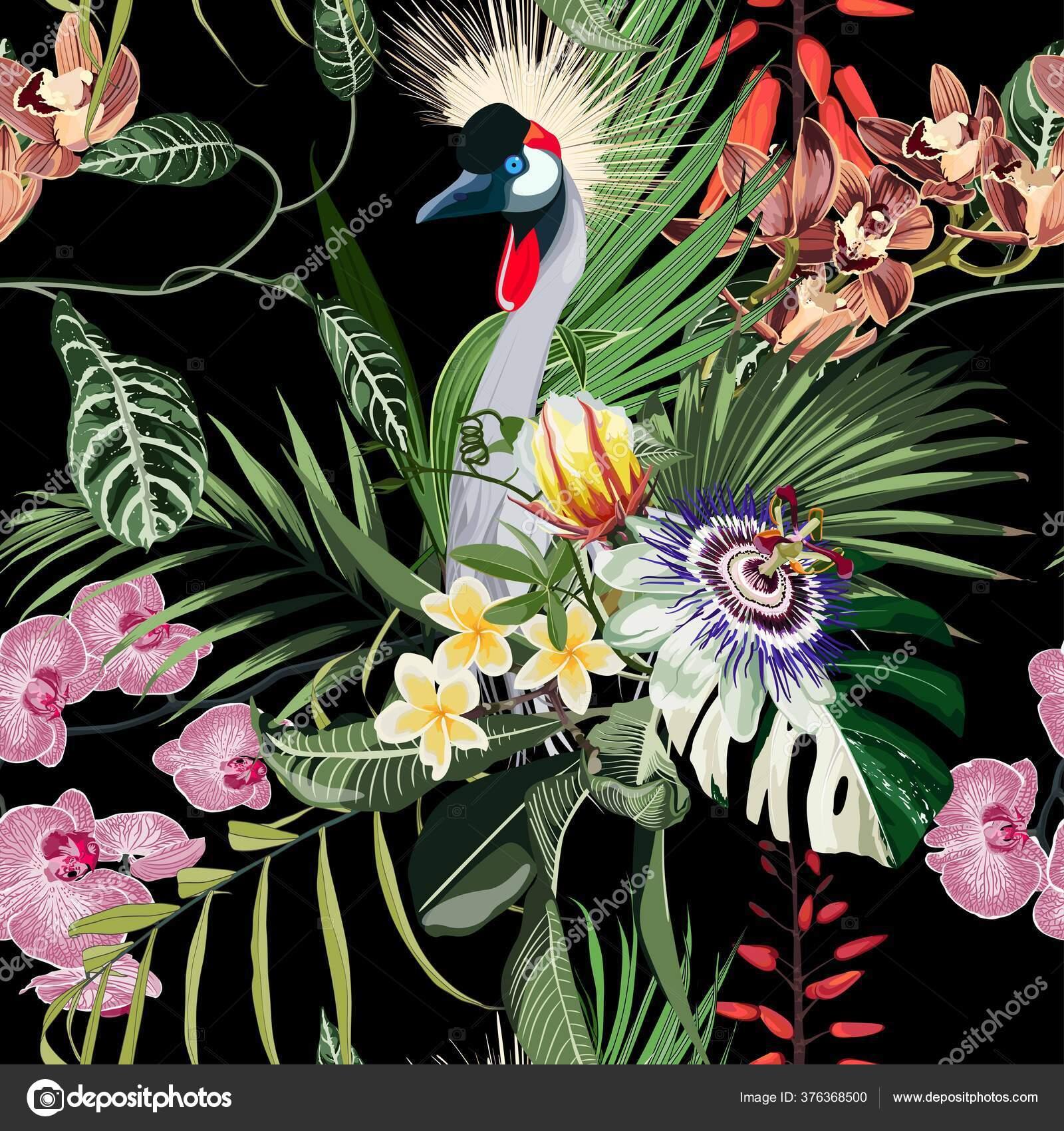Burung Eksotis Bunga Gairah Daun Palem Monstera Latar Belakang Hitam Stok Vektor C 14jan092017 376368500