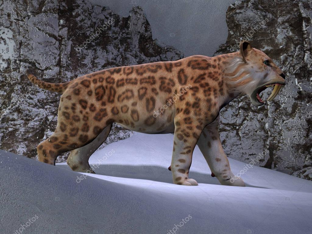 Saber-toothed Cat Mountain