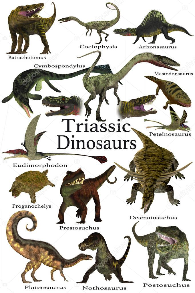 Triassic Dinosaurs Collection