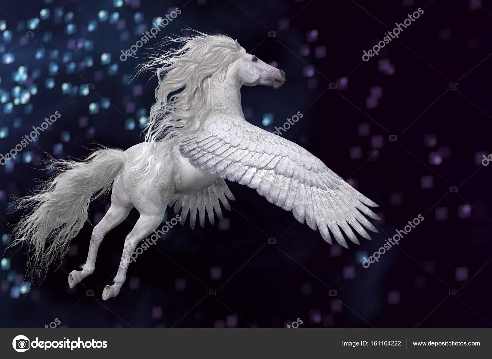 meilleure sélection 4744d 9be06 Pegasus blanche dans le ciel — Photographie CoreyFord ...
