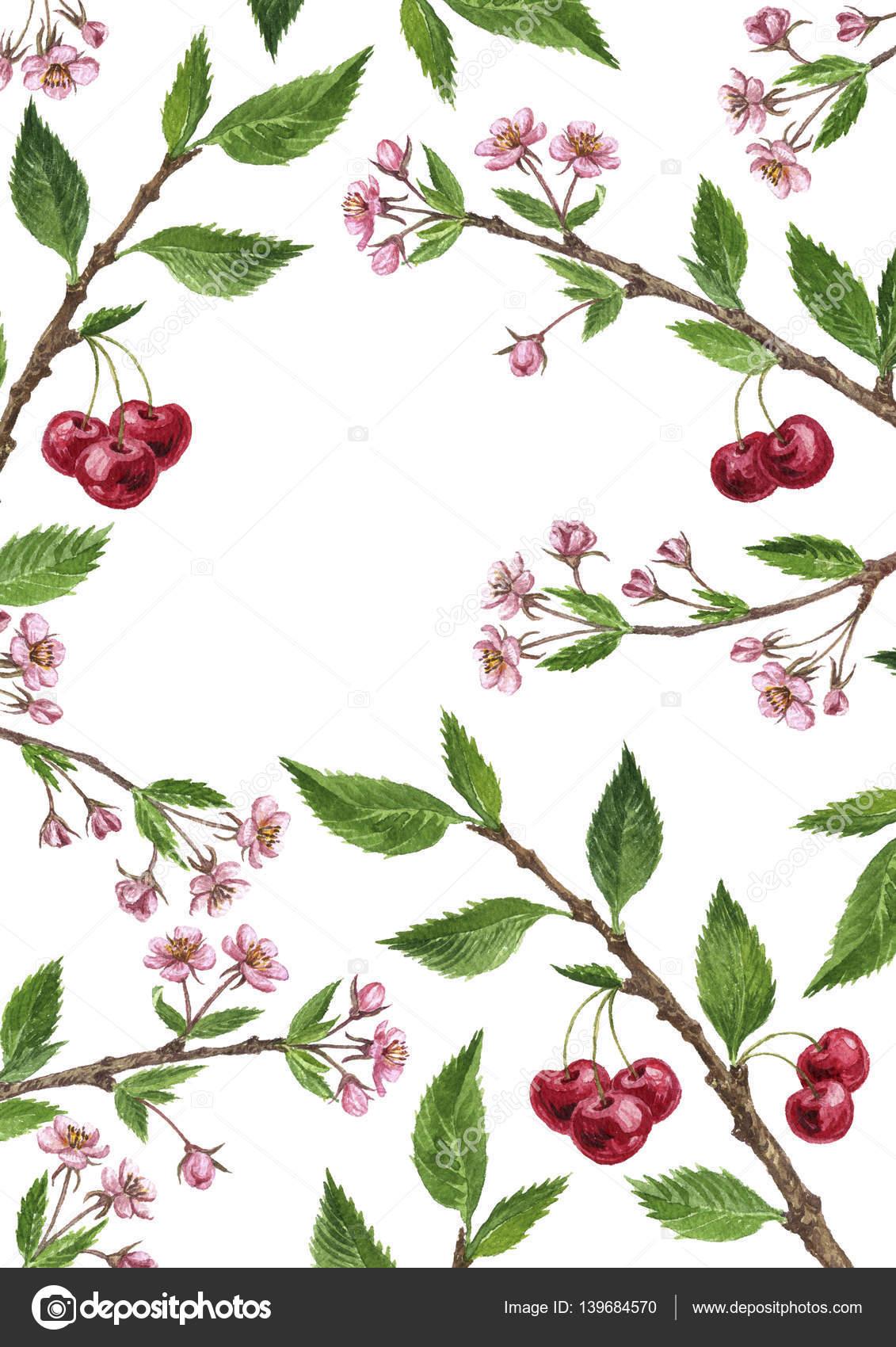Cadre Floral Avec Des Branches De L Arbre De La Cerise Fleurs