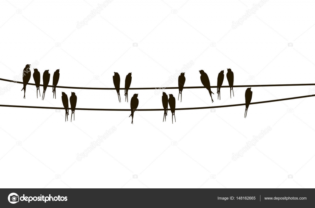 Swallows on wires — Stock Vector © cat_arch_angel #148162665