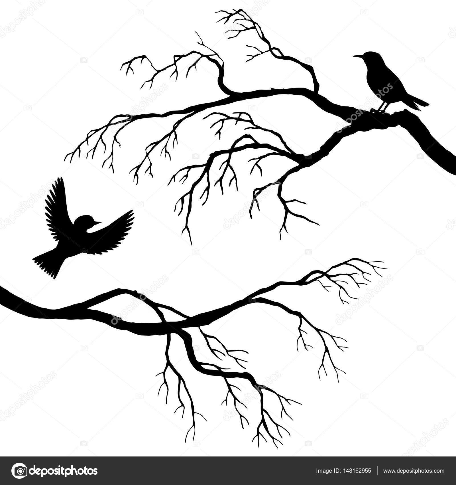 Картинки по запросу картинки певчих птиц на дереве