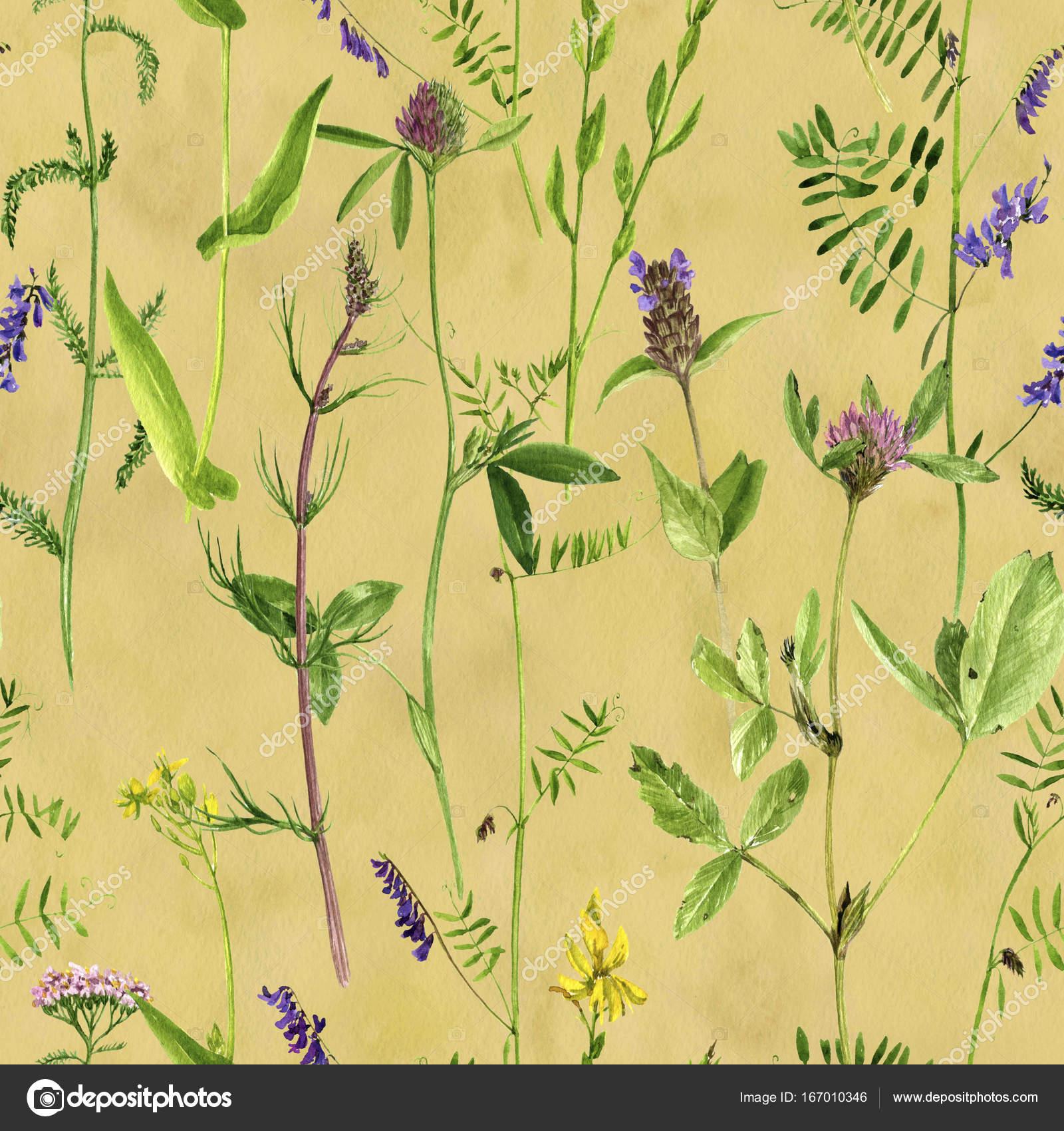 Nahtlose Muster mit Zeichnung Aquarell Blumen und Pflanzen ...