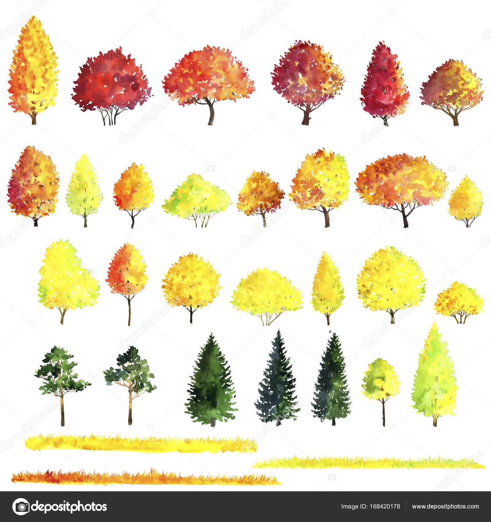 Satz Von Herbst Baume Zeichnung Aquarell Stockfoto