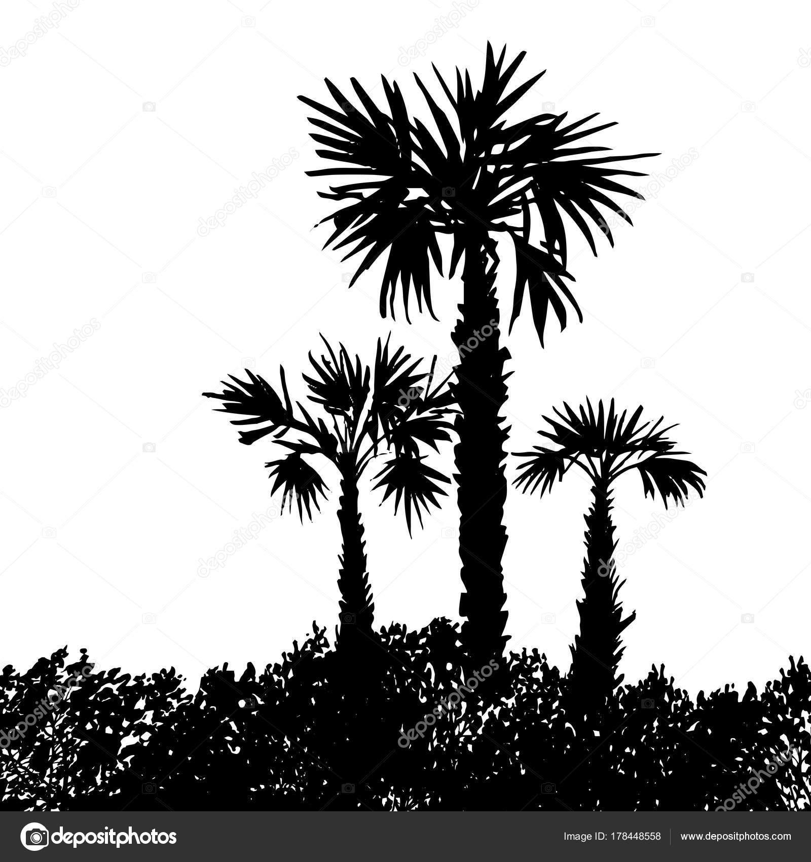 Vector paisaje con palmeras — Vector de stock © cat_arch_angel ...