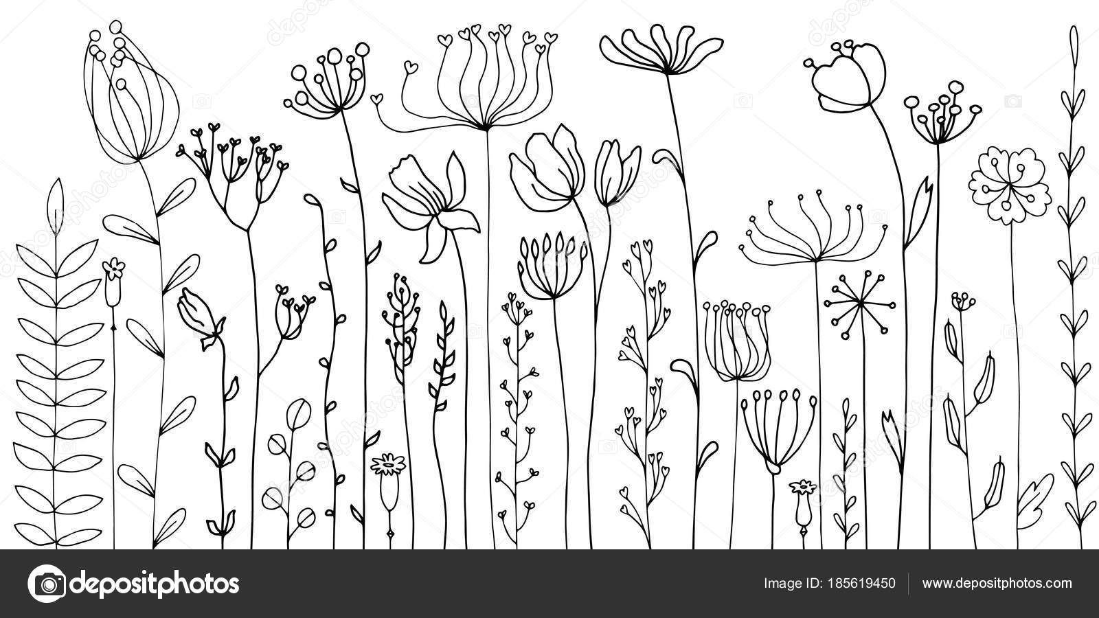 Background With Drawing Herbs And Flowers Stock Vector