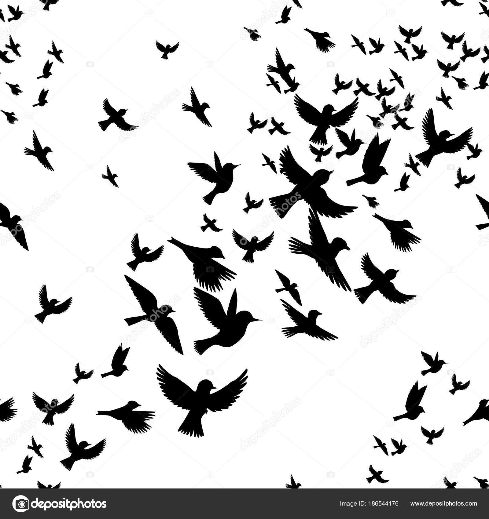 patrón sin costuras Vector con aves — Vector de stock ...