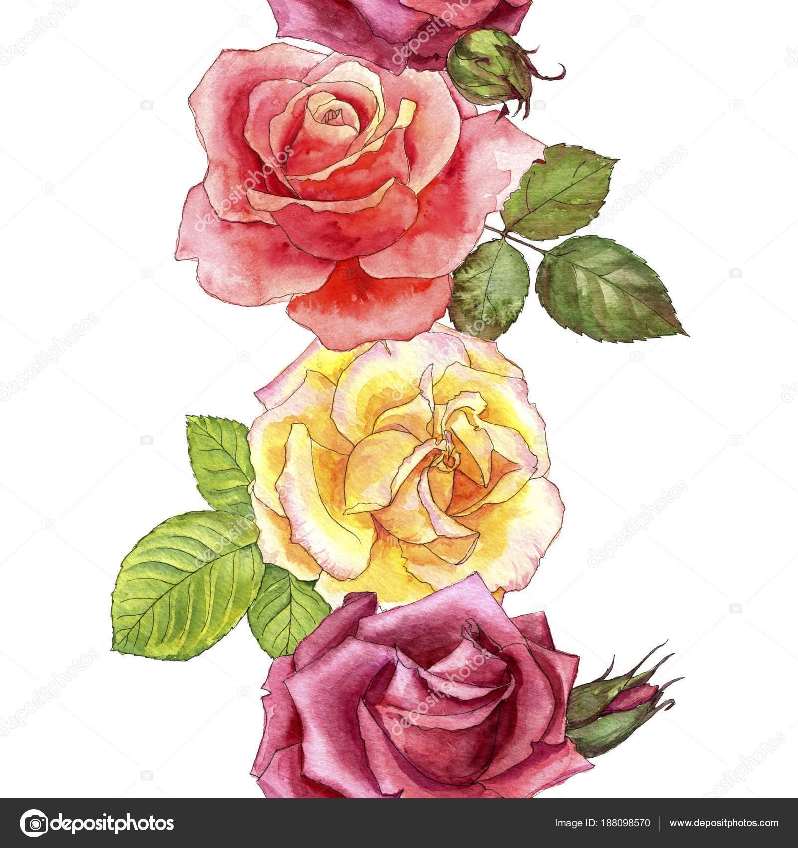 Dibujos Rosas Muy Bonitas Patrón Transparente Con Rosas Dibujos